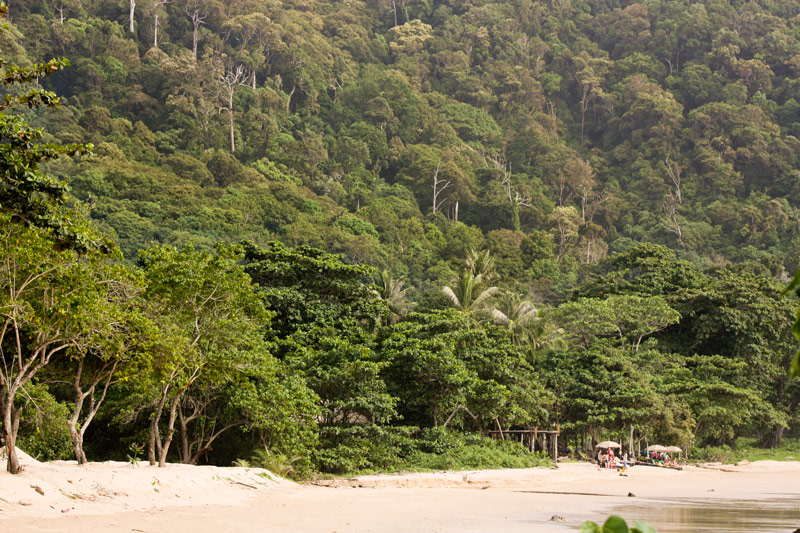 Koh Lanta southern jungle beach Thailand