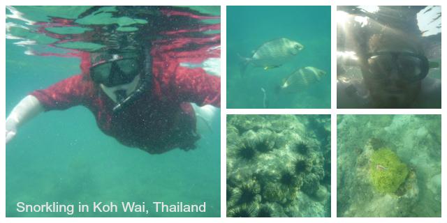 Snorkling in Koh Wai Thailand