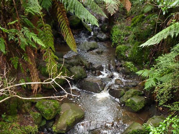 Sherbrook Falls, Dandenongs, Australia