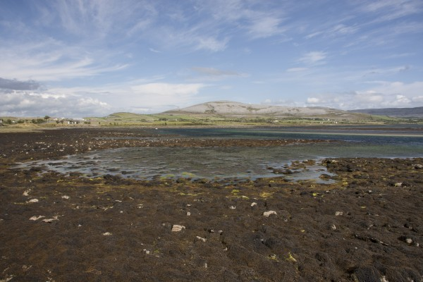 Burren Landscape near Flaggy Shore