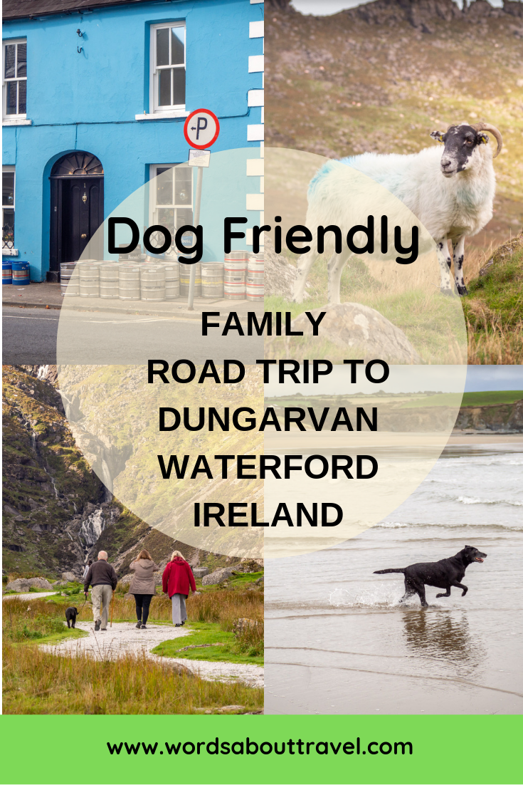 Dog friendly family holiday dungarvan waterford