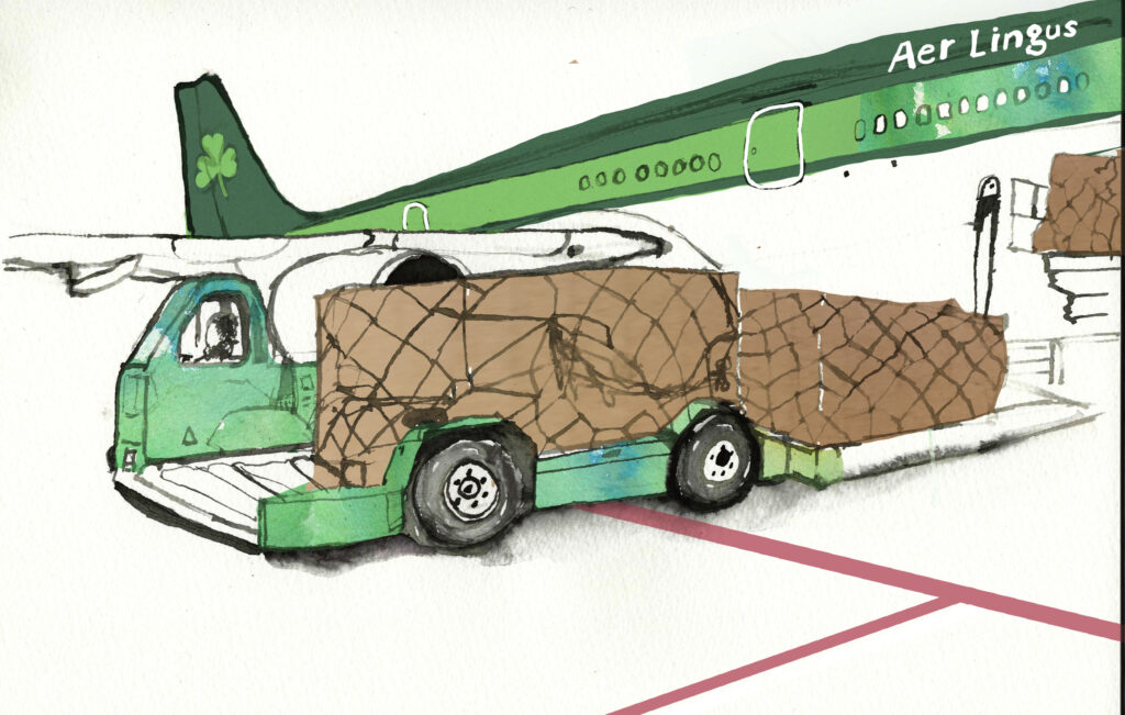 Dublin Airport Aer Lingus Illustration